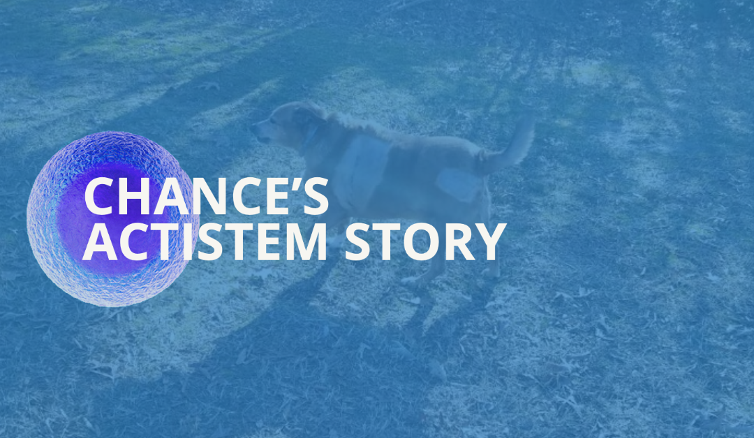 Chance's Actistem Story